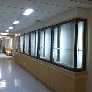Builtin microclimate cases with LED lighting glass shelves, Yale University School of Medicine