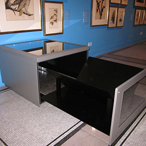 Custom case for Audubon folio with front window to allow viewing of binding, The New-York Historical Society