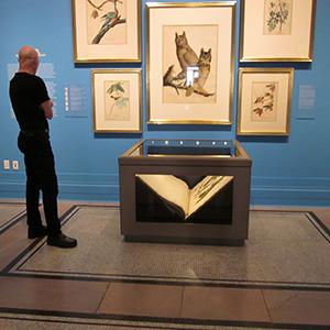Custom case for Audubon folio, The New-York Historical Society