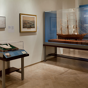 Custom cases with angled label rails, The New-York Historical Society, presented at El Museo del Barrio