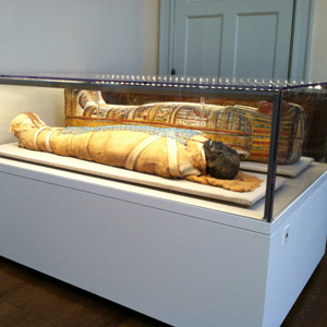 Archival case with LEDs for mummies at Massachusetts General Hospital's 1840s operating theater